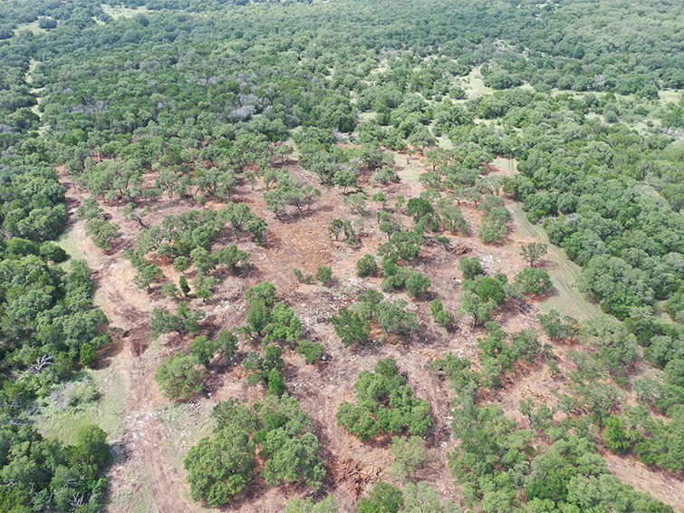 best land clearing company